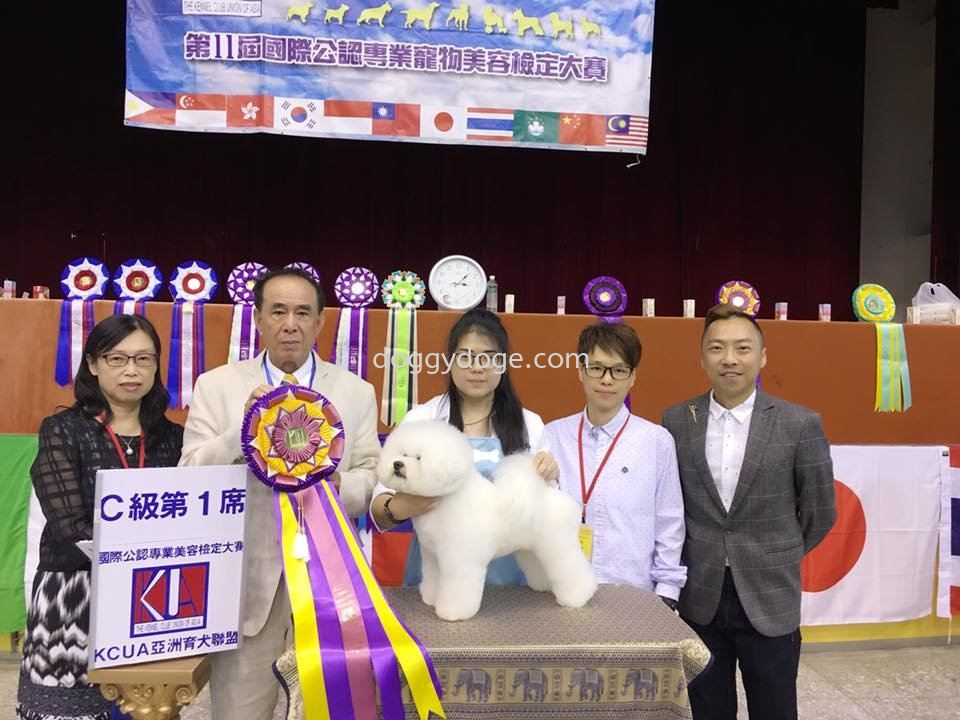11th KCUA Intl. Grooming Certification 2018 (Taiwan) Grade C Champion!!!