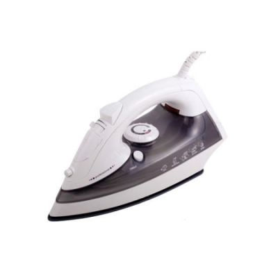 HOTEL ELECTRIC STEAM IRON HD-03