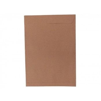 "Brown Envelope 9"" X 12.75"" (250 PCS)"