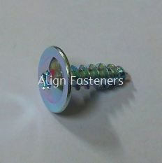 Self Tapping Screw Washer Head