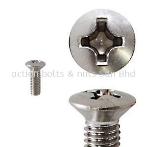 Stainless Oval Head Phillips MS