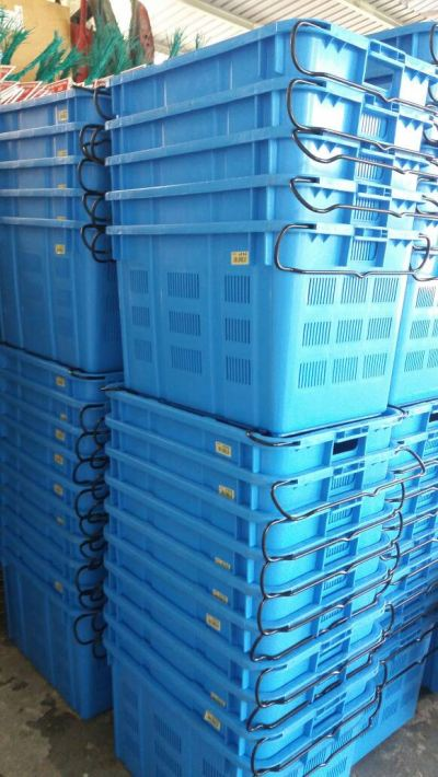 Storage Basket Rental