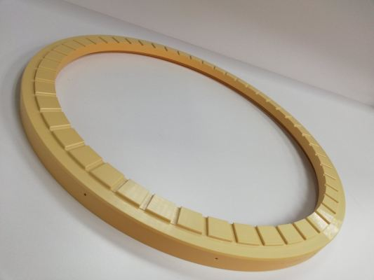 300MM CMP RETAINER RING