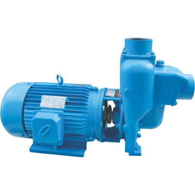WEBSTER Self Priming Pump
