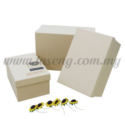 Rectangle Box 3in1 - Plain Beige Box (BX-G01-40)