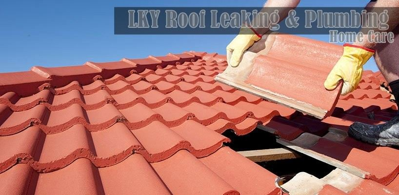 LKY Roof Leaking & Plumbing