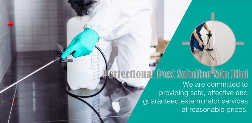 Perfectional Pest Solution Sdn Bhd