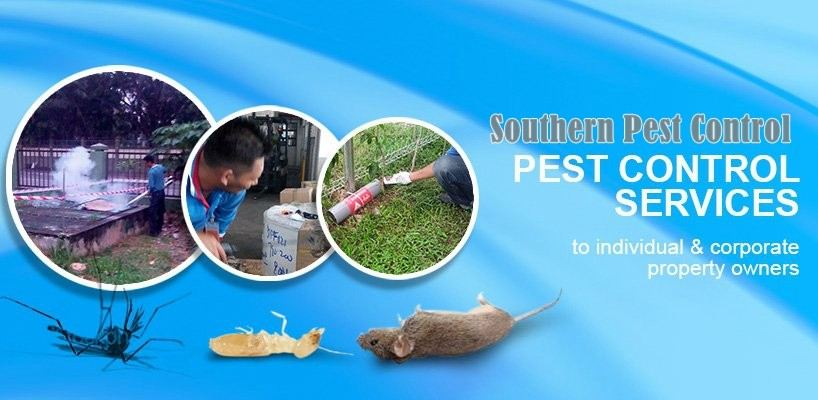 Southern Pest Control