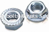 Hex Flange Nut-Serration-ZP