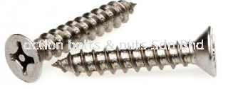 A2 FH Self Tapping Screw  TORX PIN
