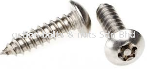 A2 PH Self Tapping Screw  TORX PIN
