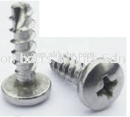 BH Self Tapping Screw +BT