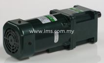 IH9PU200-323 MEISTER Induction 200W Motor
