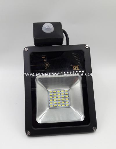 PIR LED Flood Light with Motion Sensor 20W