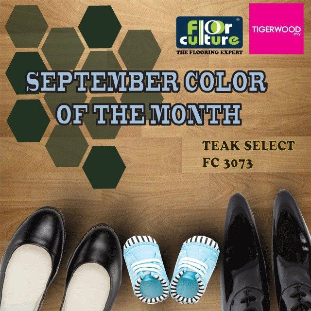 [September 2018] Color Of The Month- FC 3073 Teak Select