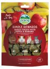 Oxbow Simple Rewards Baked Treats with Apple & Banana (3oz) Treats & Supplements Chinchilla Product