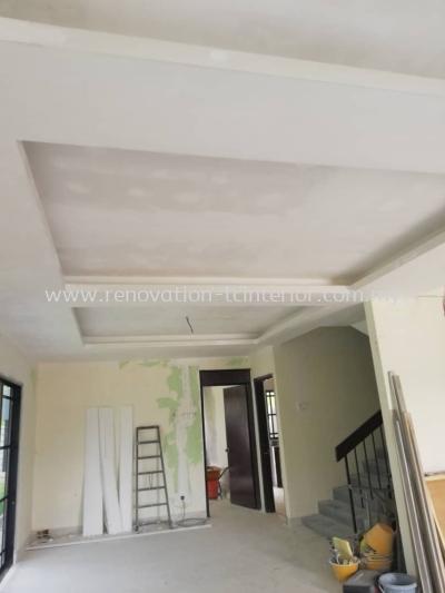 Renew Plaster ceiling