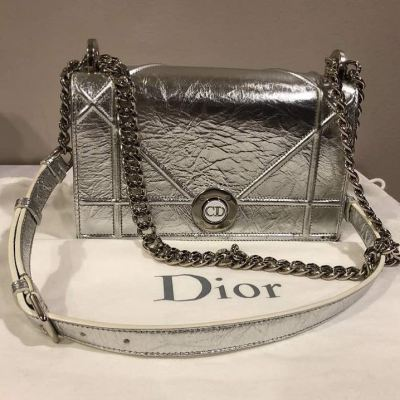 Diorama Metallic Calfskin Small in Silver