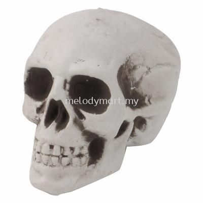 SKULL HEAD (16*20*19)
