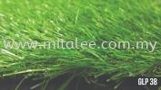 GLP 38 Sample Grass Carpet
