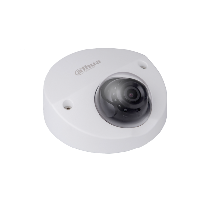 2MP IR Mini Dome Network Camera (Built-in Mic)