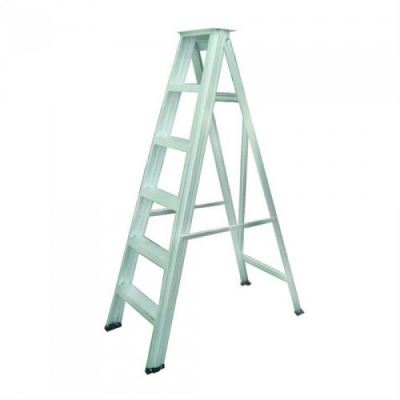 Everlas Heavy Duty Single Sided Ladder