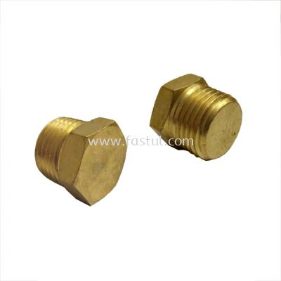 BSPT MALE PLUG BRASS