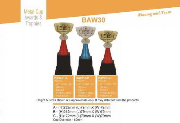 BAW30 Metal Cup with Handle