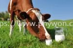 Dairy Protein Functional Dairy Protein