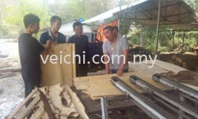 Application of VEICHI AC80C on Veneer Peeling Lathe