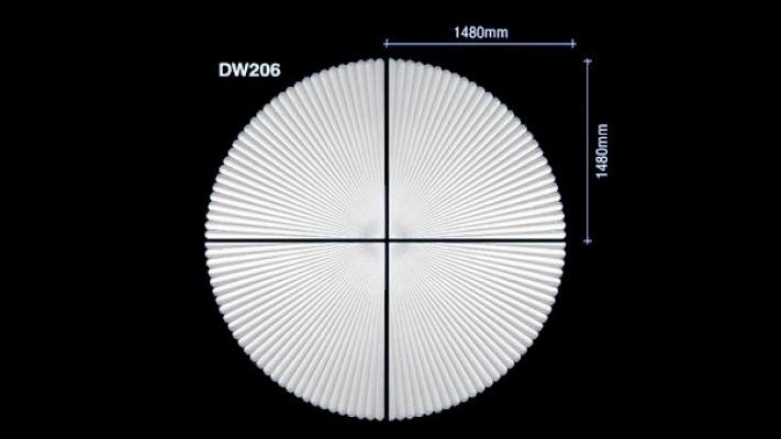 DW206