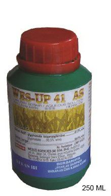 250 ML  WES UP 41 (GRASS)  WEEDKILLER - 00295H