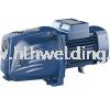 JET Self Priming Pump 370W, 5~55L/min, 31~11m JSWm1C-N Pedrollo JET Self Priming Pump JSW Pedrollo Electric Water Pump Water Pump Malaysia
