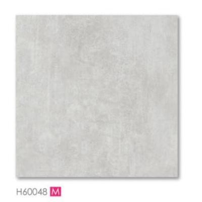 H60048