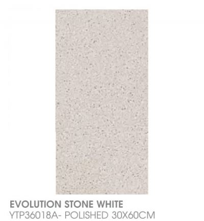 Evolution Stone White YTP36018A - Polished