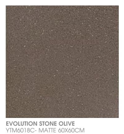 Evolution Stone Olive YTM6018C - Matte
