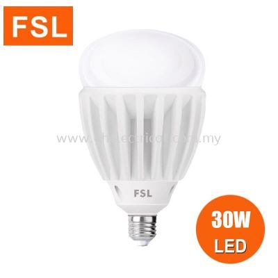 Fsl LED Professional Bulb