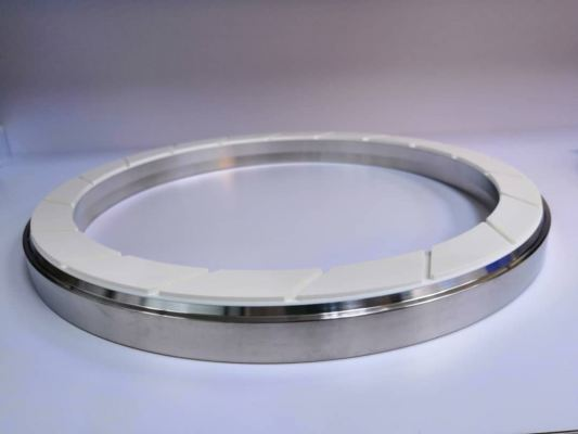 300MM TWO PIECE CMP RETAINER RING
