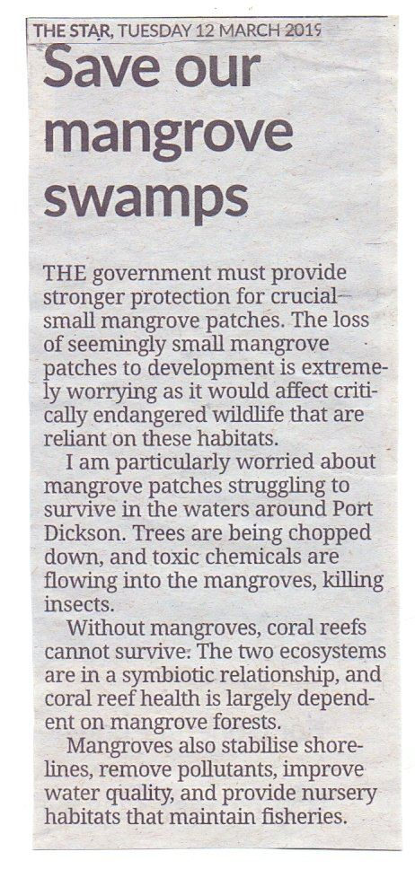Save our mangrove swamps  #TheStar 12.03.2019