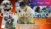Pet Industry Seminar {Register Now} Others