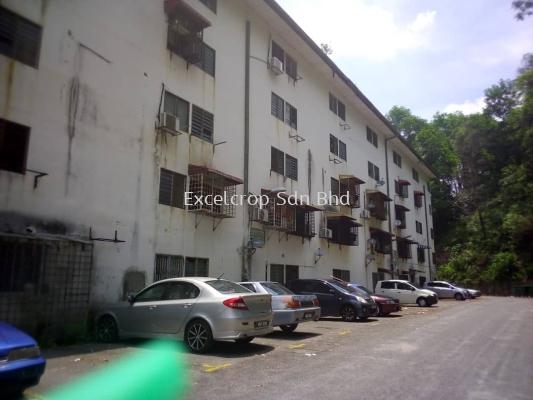 (R0448) Flat for Rent at (Taman Damai Indah, Kajang)