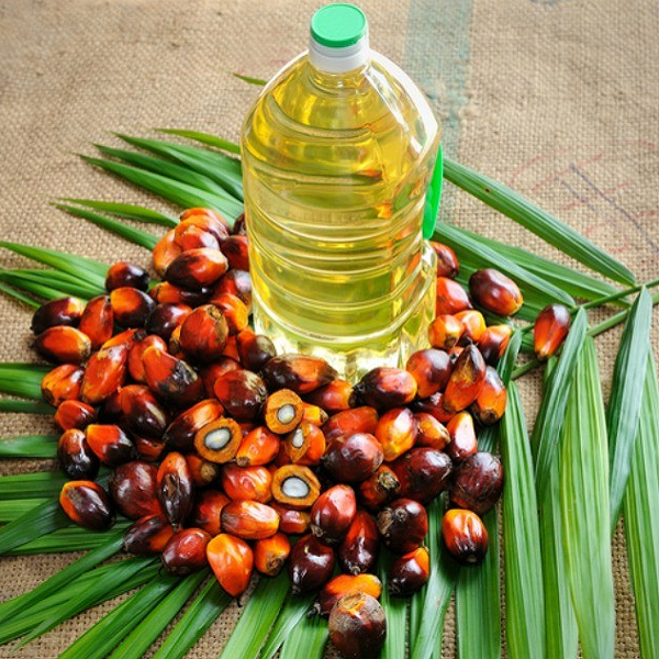 China 'keen' to buy more Malaysian palm oil  M'sia News