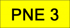 Number Plate PNE3 VVIP Plate