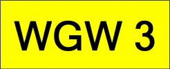 Number Plate WGW3 VVIP Plate