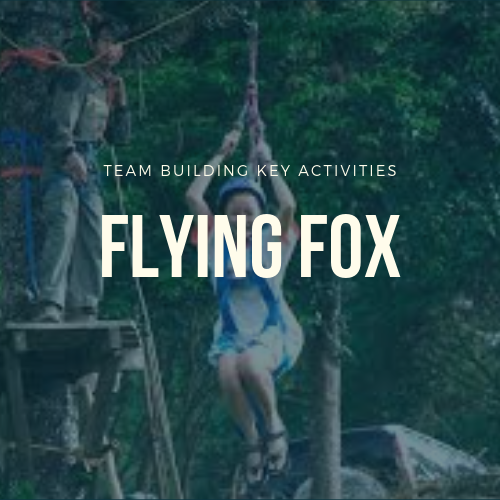 Flying Fox Adventure In Malaysia 2019 Team Building