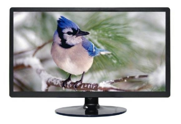 LC-ME2203 21.5 Inch commercial LCD CCTV monitor (plastic case)