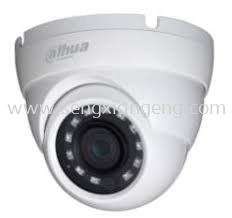 DAHUA 2MP HDCVI IR EYEBALL CAMERA (T1A21)
