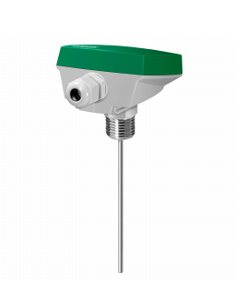TG-DH312/...Immersion sensor with housing, without well, R1/2""
