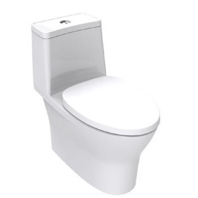 Flexio One Piece WC CL25300
