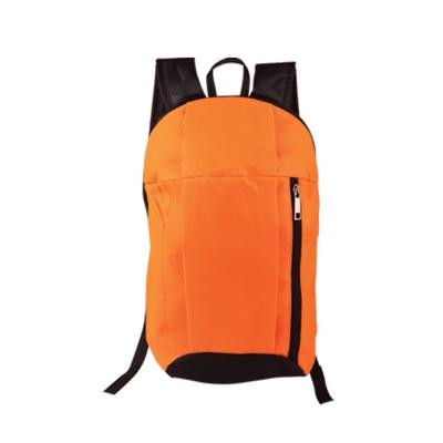 Backpack (BB 007)